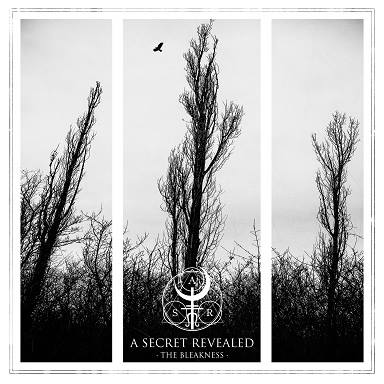 A SECRET REVEALED - The Bleakness cover